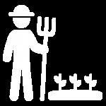 6,850 Agricultores/produtores activos nos programas dos Clubes de Agricultores e de Produtores