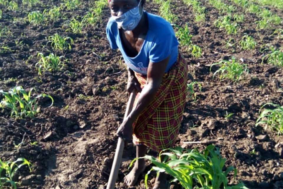 Women promoting development